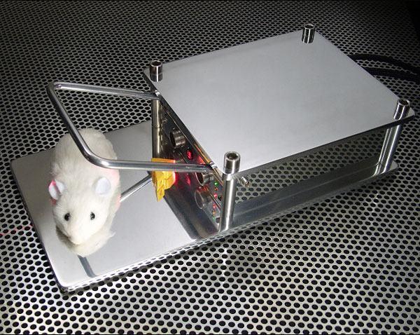 better_mousetrap