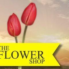 The Flower Shop: Seja Produtor de um Filme de Hollywood!