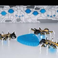 Tecnologia inspirada na natureza: BionicANTS, eMotionButterflies e FlexShapeGripper