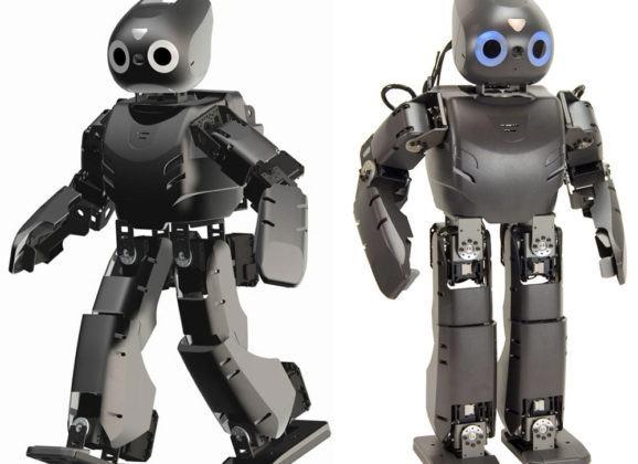 Equipe usa o robô Darwin para o tratamento de crianças com paralisia cerebral