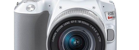 Canon EOS Rebel SL3 – uma pequena guerreira