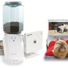 Um Sistema de Alimentação de Cães Para Donos Relapsos