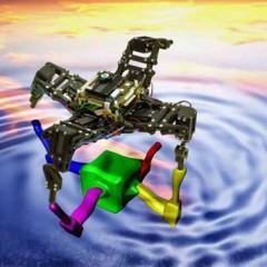 Um Robô que se Adapta ao Ambiente