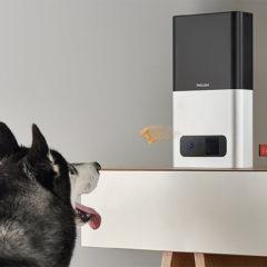 Petcube Bites, uma câmera que pode jogar biscoitos pro seu cão ou gato